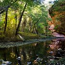 West Fork Reflections by Saija  Lehtonen