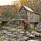 A Wheel In The Woods  by Paul Lubaczewski