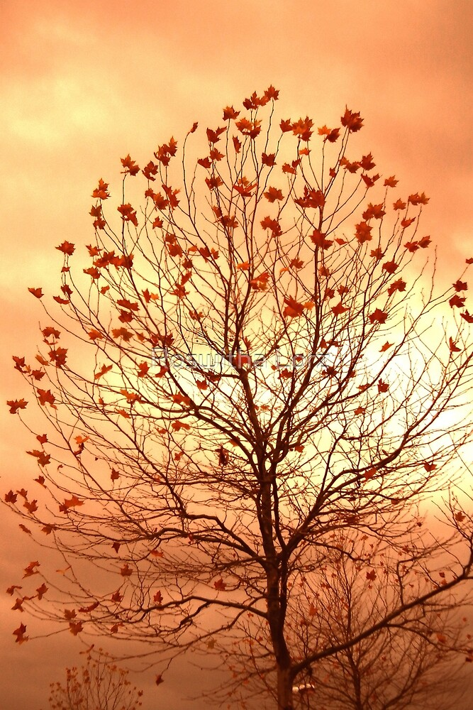 AutumnTree by RosiLorz