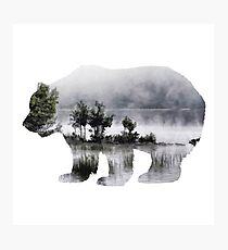 Misty Waterscape Bear Photographic Print