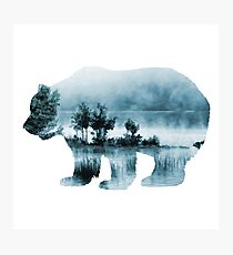 Misty Waterscape Bear - Turquoise Blue Photographic Print