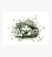 A Cat in a Hat - B & W Photographic Print
