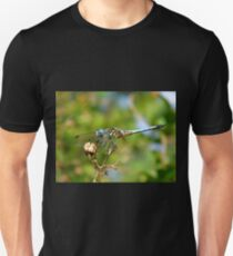 Swift Long Winged Skimmer T-Shirt