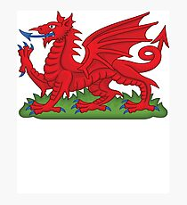 Cymru Wales Dragon Deluxe Design Photographic Print