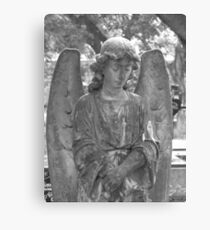 Don't Blink... Canvas Print
