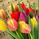 Tulips And Music by Steve Purnell
