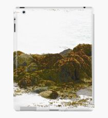 Seaweed covered rocks iPad Case/Skin