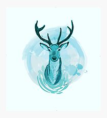 Blue Stag Illustration Photographic Print