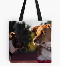 Curiosity killed the cat, but for a while I was a suspect. Tote Bag