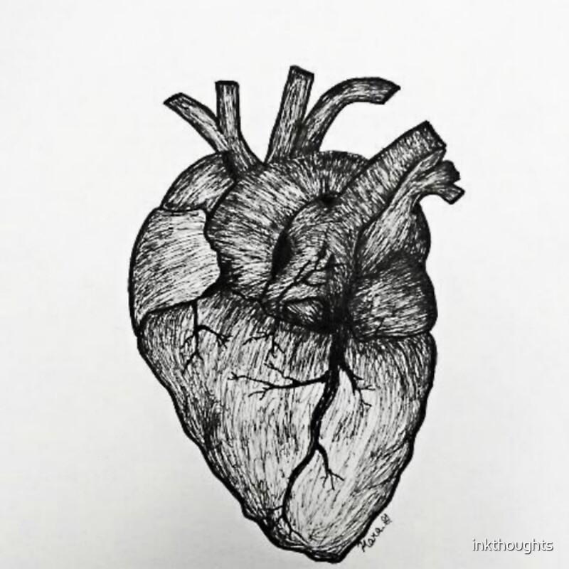 Pegatinas «Corazón anatómico» de inkthoughts | Redbubble