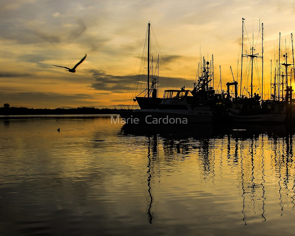 Steveston Sunset by Marie  Cardona