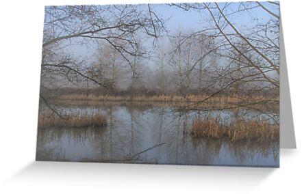 Magical Mist by Marie  Cardona