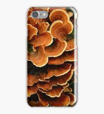 Bracket Fungus iPhone Case/Skin
