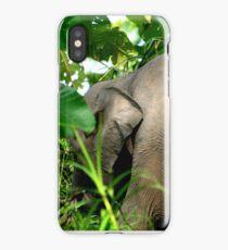 Bornean Pygmy Elephant iPhone Case/Skin