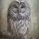 Ural Owl by polly470