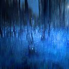 ALLOW THE POWER OF THE BLUE FOREST TO WASH OVER YOUR SOUL by leonie7