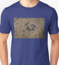 Enchanting Butterflies - Exquisite Sapphire Clusters on the Ground T-Shirt