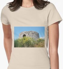 Defence post, Paxos island Womens Fitted T-Shirt
