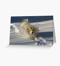 Snowplow Greeting Card