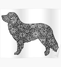 Nova Scotia Duck Tolling Retriever- Part of the Doodle Dog Collection Poster