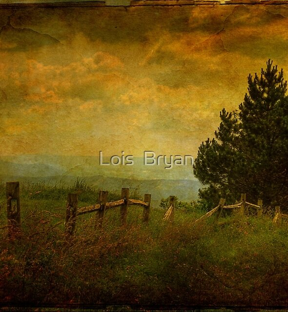 View From The Top by Lois  Bryan
