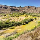Rio Grande Bend by Owed To Nature