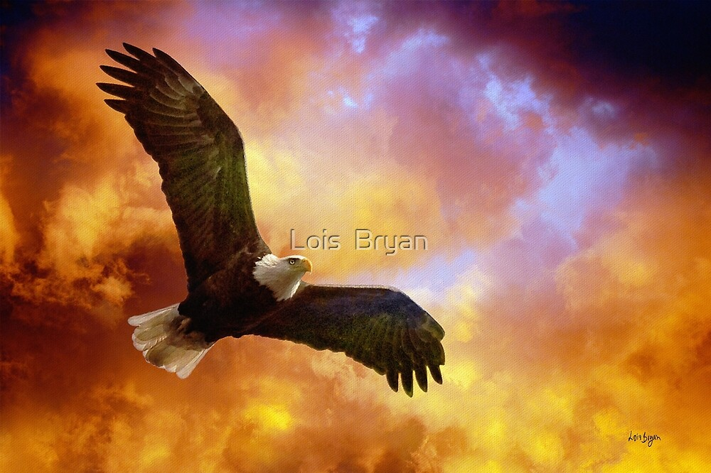 Perseverance by Lois  Bryan
