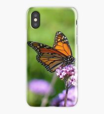 Autumn Beauty! - Monarch Butterfly - Otago - NZ iPhone Case/Skin