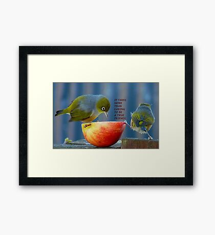 Friendship! - It Takes More Than Caring...Card - Silvereye - NZ Framed Print