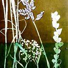 "Mornington Peninsula Grasslands 6 by Belinda ""BillyLee"" NYE (Printmaker)"