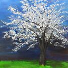 Tree with Storm Sky by Melissa Pinner