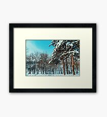 Forest Trees Covered With White Winter Snow Framed Print