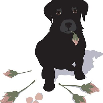 Ruby the black labrador by victoriawalkden