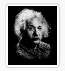 Albert Einstein Portrait Vintage Graphic Sticker