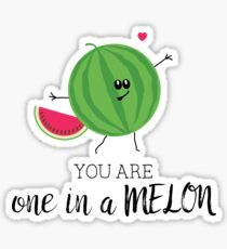 You Are One in a Million Fun Watermelon Summer Fruit Pun Sticker