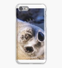 Seal pup iPhone Case/Skin