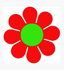Red Green Hippy Flower Daisy Photographic Print