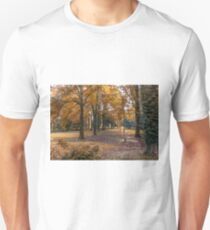 Autumn in the Woods T-Shirt