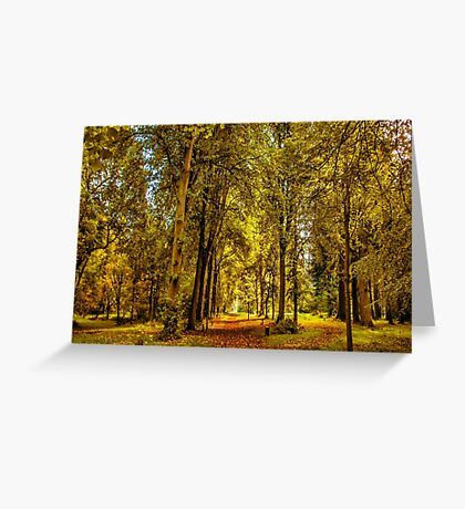 Woodland Pathway Greeting Card