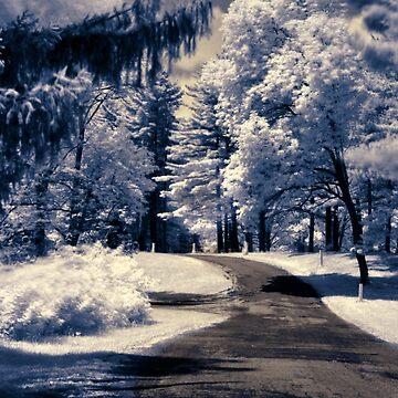 Wintery Scene by berisme