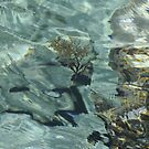 The colour of water ~ Crete by dunawori