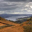 Loughrigg Fell View by Tom Gomez