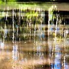 Wasserreflexionen von RebecaZum