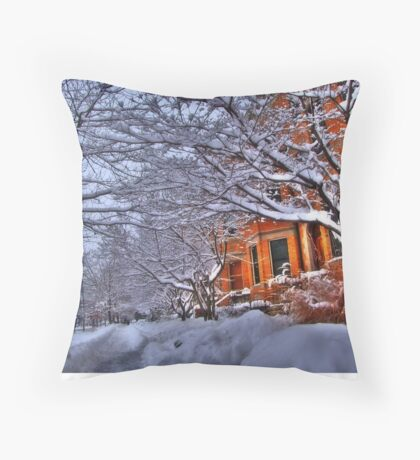 All this snow Throw Pillow
