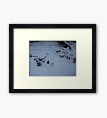 Battle of hoth Framed Print