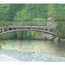 Horsforth Leeds Newlay Bridge by Brian Hargreaves
