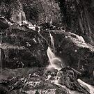 Angel Dust Falls by John Poon