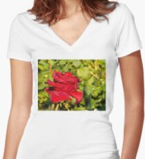 Beautiful red rose 2 Women's Fitted V-Neck T-Shirt