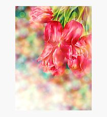 Bokeh Background with Tulips Photographic Print