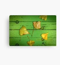 Autumn Or Fall Leaves Canvas Print